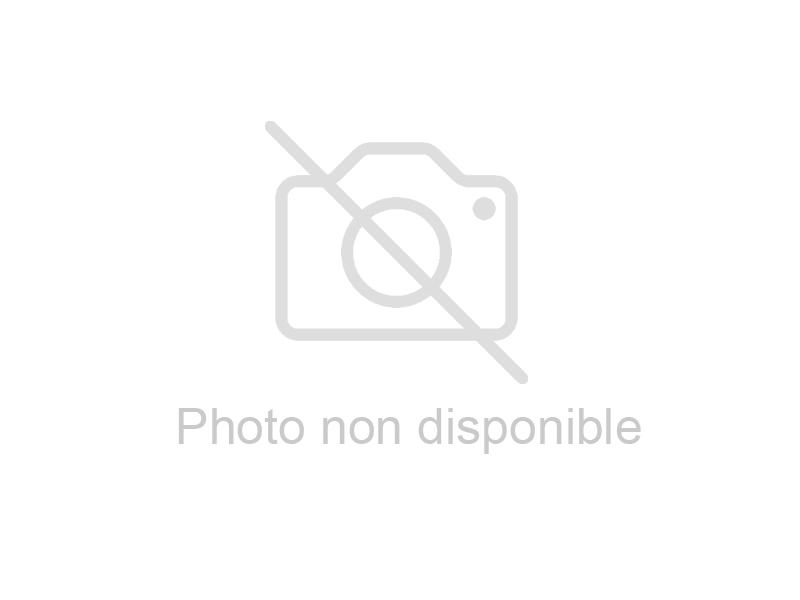 MITIGEUR 38° AVEC CLAPETS NF + RACCORD TOURNANT